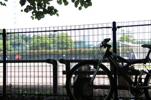 年末休みの今日、倉敷スポーツ公園へ行ってみました。